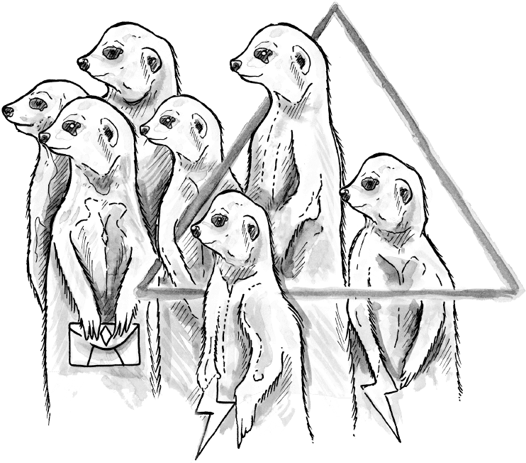 meerkat illustration